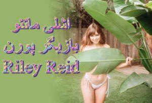 اشلی ماتئو بیوگرافی و عکس بازیگر پورن با نام مستعار رایلی رید Riley Reid